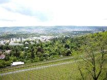 Blick vom Burgholzhof-Turm über die Innenstadt. Der Turm diente der dortigen Flak-Batterie als Beobachter.